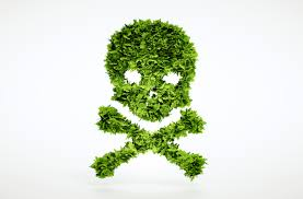 pesticides are not required for artificial turf