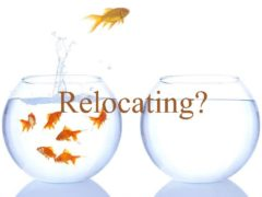 Relocate your business safely, relocation